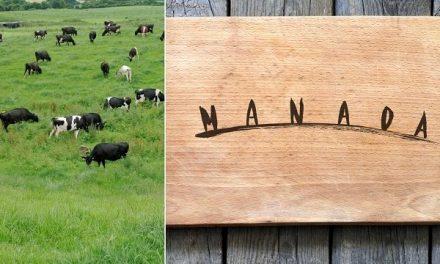 Carnes Manada busca optimizar las practicas ganaderas mediante un manejo regenerativo del suelo