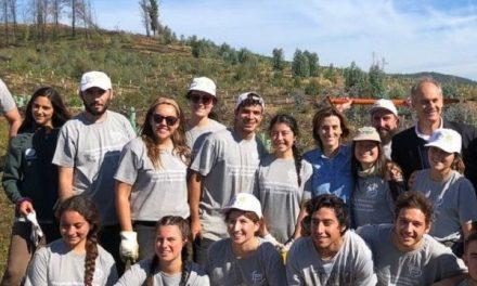 Santa Olga inicia proyecto de Reforestación Nativa y Desarrollo Forestal Sustentable