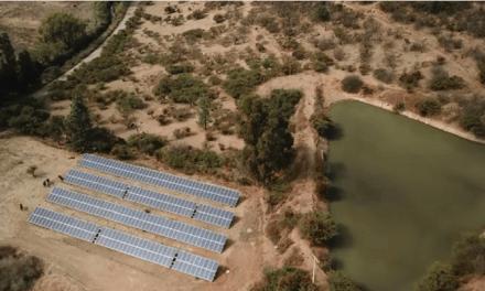 Viu Manent incorpora paneles solares para el 100% de sus necesidades de consumo eléctrico