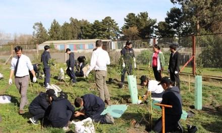 Fundación Reforestemos realiza sus primeros trabajos de reforestación nativa en el Bio Bio junto a Cargill y estudiantes de Coronel