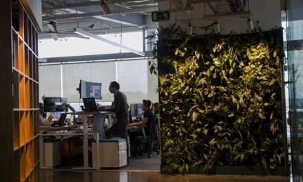 Oficinas más sustentables influyen en el desarrollo laboral de los trabajadores