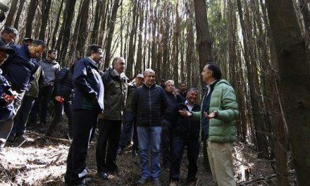 Autoridades visitan experimento pionero de restauración ecológica en Reserva Nacional Nonguén