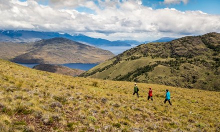 Servicios turísticos de Parques Pumalín y Patagonia cerrados en abril por traspaso oficial a CONAF