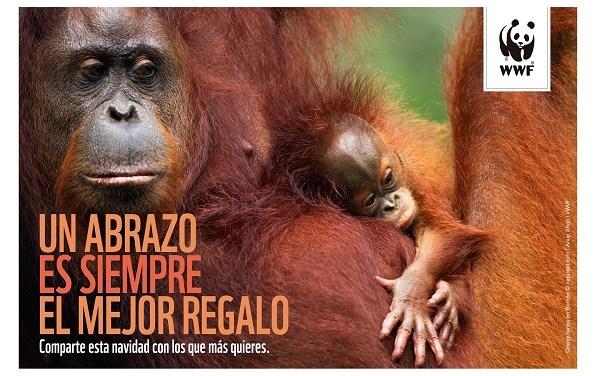 Regala una Navidad Salvaje y protege la naturaleza con WWF