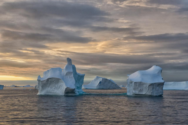 U. de Santiago lidera estudios sobre efectos del cambio climático en la Antártica
