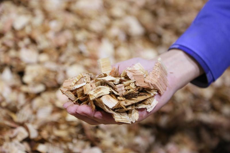 La biomasa: residuos de la agricultura o de la industria forestal transformados en energía renovable