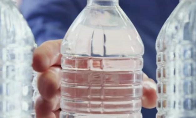 Del tarro de reciclaje hasta la primera capa de piel: Ford recicla 1.2 billones de botellas plásticas al año para piezas de autos