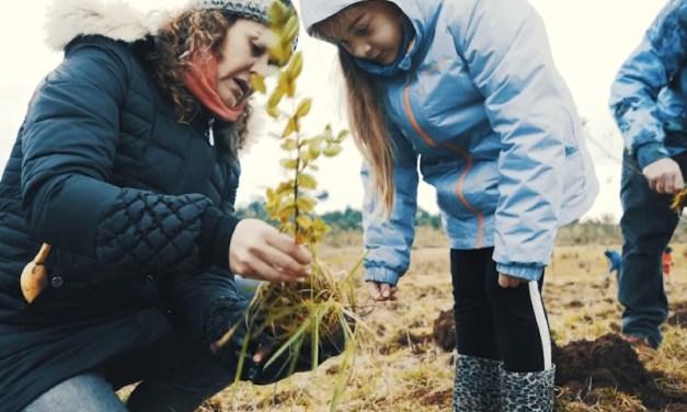 Artesanías ÜÑÜ: el emprendimiento de diseño Chilote sostenible con foco en el cuidado del bosque y océano