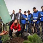 Ministra Schmidt lanza histórica campaña de reforestación en Cerro Renca en el marco de la COP 25