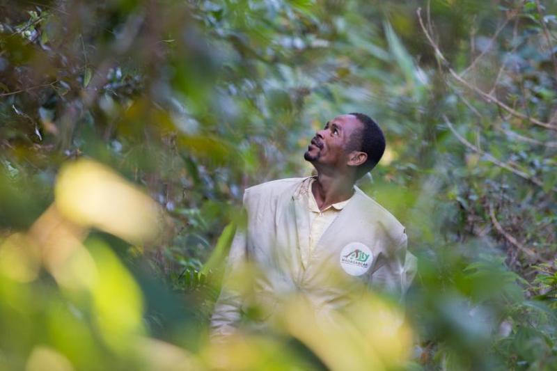 Guardaparques: héroes anónimos de la conservación de vida silvestre