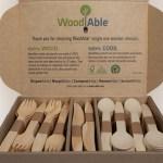 Compañía Chilena de Fósforos entregará más de 400 mil cubiertos de madera en Lollapalooza Chile