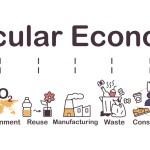 Hacia una economía circular en Chile: dónde estamos y cuánto nos falta: La mirada de 8 organizaciones de cara a la circularidad