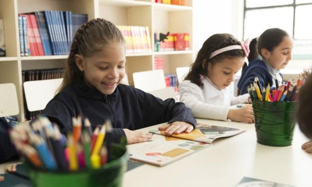 A través de su Programa Haciendo Escuela, Falabella comparte contenido educativo para todos los niños de Chile en su plataforma digital