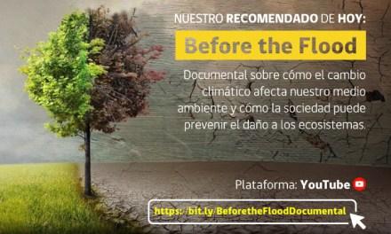 #MMAENCASA, la nueva campaña del Ministerio del Medio Ambiente para tomar consciencia durante la cuarentena