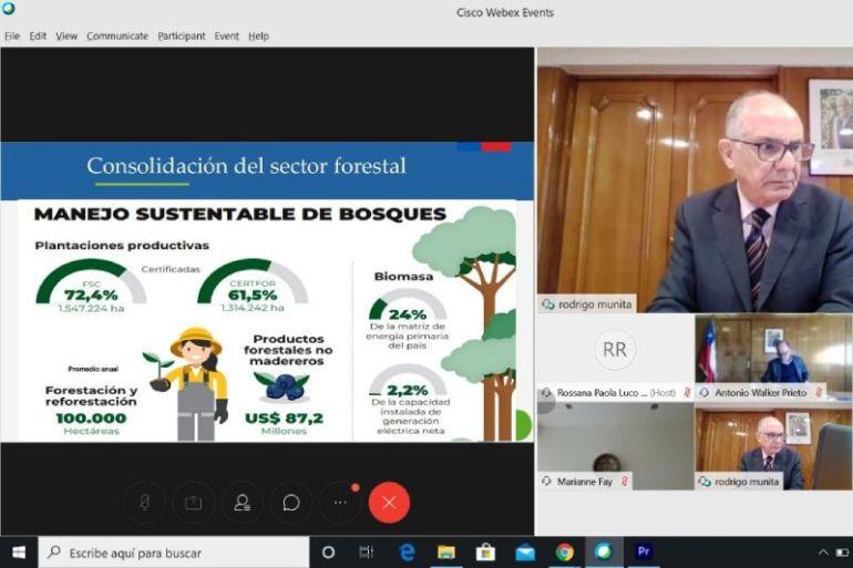 Seminario Internacional organizado por el Banco Mundial y Conaf destaca el rol de los bosques de Chile para una reactivación sostenible