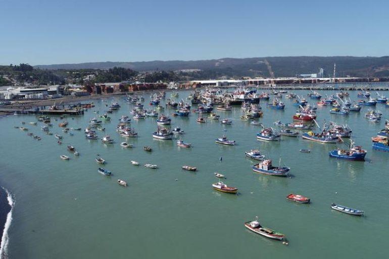 Enel Generación Chile lanza fondo concursable para emprendedores de la pesca artesanal de coronel