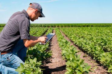 AgroStart de BASF abre sus inscripciones para startups de toda América Latina