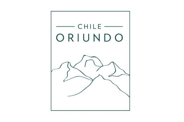 Proyecto ChileOriundo: conocer nuestra flora y fauna nativa en peligro a través del juego memorice