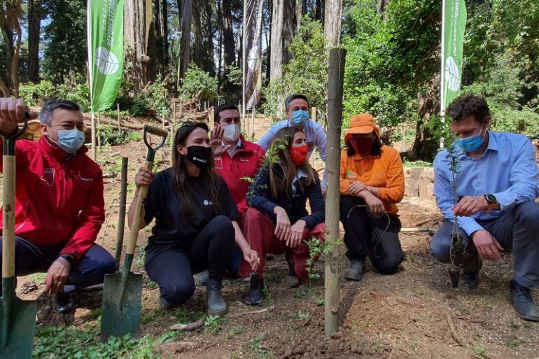 Fundación Reforestemos y Minvu Biobío oficializan su alianza con plantación simbólica en Parque Cerro Caracol