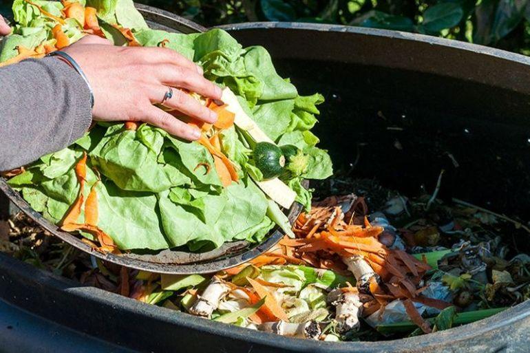 Compotas, vitamínicos, barritas e ingredientes funcionales: propuestas pioneras que rescatan pérdidas de alimentos