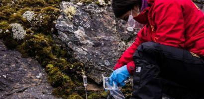 Comité internacional de ciencia antártica aprueba tres nuevos programas de investigación