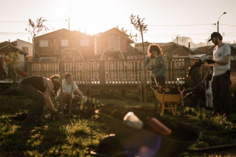 Patagonia y Fundación Legado Chile restauran ecosistema de humedal urbano de Llanquihue
