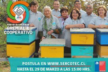 Sercotec abrió programa que beneficia a gremios y cooperativas de todo el país