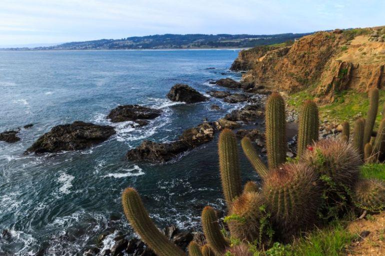 Cuatro nuevas empresas de turismo certifican sus buenas prácticas sustentables y adquieren Sello S