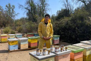 La Abejita de Caleu: el emprendedor de Tiltil que cambió la construcción por la apicultura