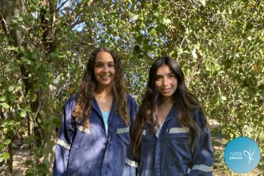RutaPlantae: Estas emprendedoras pasan dos veces por semana por tu casa para recolectar y tratar los residuos orgánicos domiciliarios
