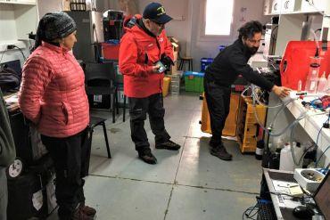 Cómo miden las olas de calor en Antártica y qué efectos podrían traer a los ecosistemas marinos