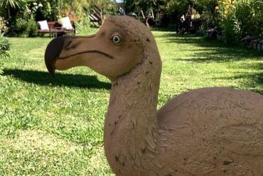 """""""Huellas de Extinción"""": El museo virtual que permite interactuar con especies extintas gracias a la realidad aumentada"""