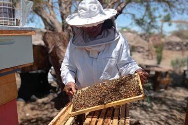 Mercado Digital: la nueva plataforma que reúne emprendimientos de mujeres indígenas