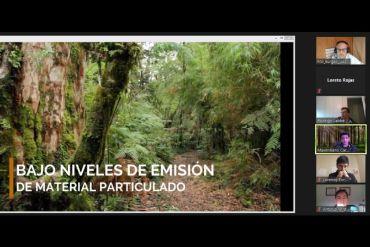 Investigadores UACh analizan aciertos y brechas en la producción de pellets para mejorar su abastecimiento en Los Ríos