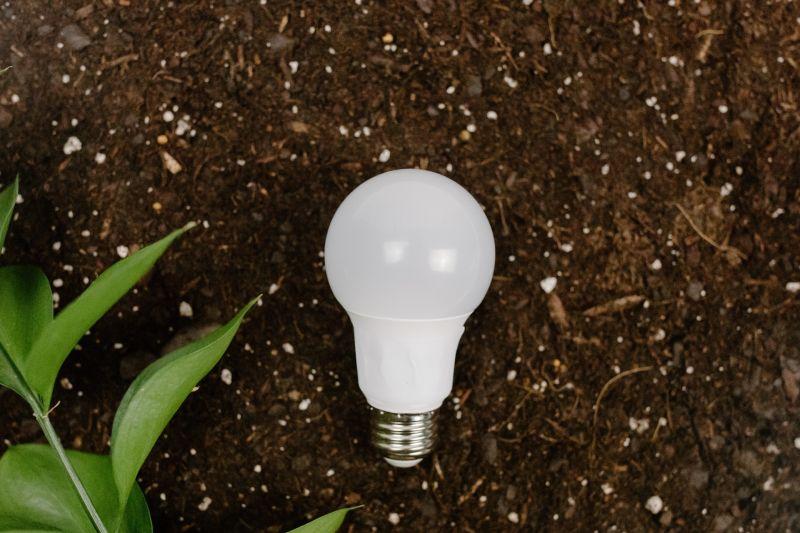 """""""EcoImpacta Corfo"""": La plataforma que invita al ecosistema emprendedor a participar en desafíos de acción climática"""