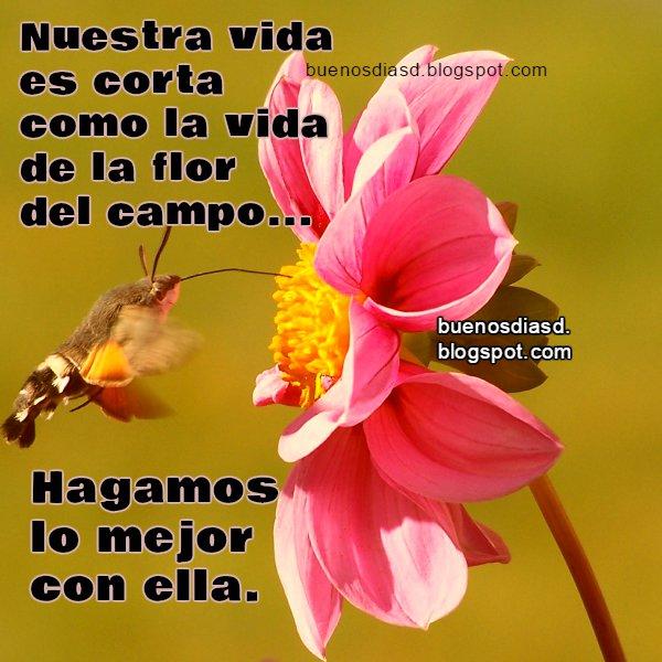 Imagenes De Buenos Dias Cristianas Nuevas Para Tu Amigo