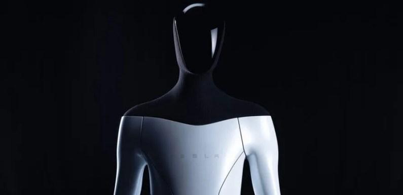 Tesla Bot, el robot humanoide para tareas diarias.