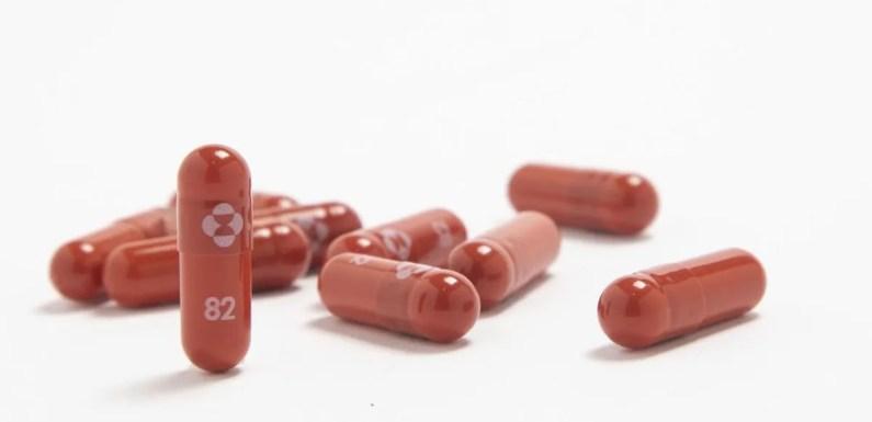 Nuevo medicamento contra el Covid-19 podría ser la clave para aliviar la situación sanitaria