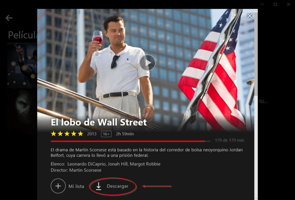 Netflix Offline PC Windows 10