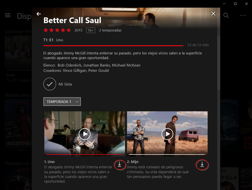 descargar series netflix windows 10