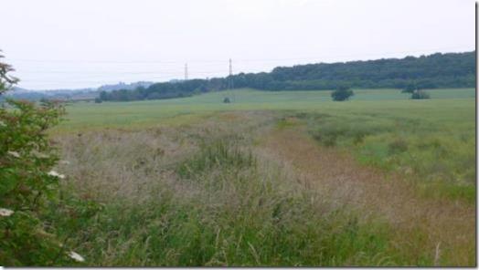 Fairham Pastures greenbelt and farmland