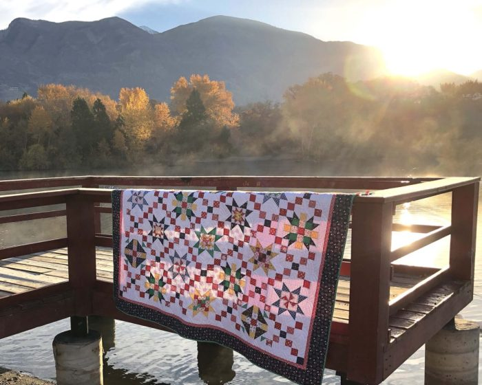 Free Sampler Quilt pattern from Amy Smart