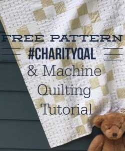Sew Goodness monthly sewing project featured by top US quilting blog, Diary of a Quilter