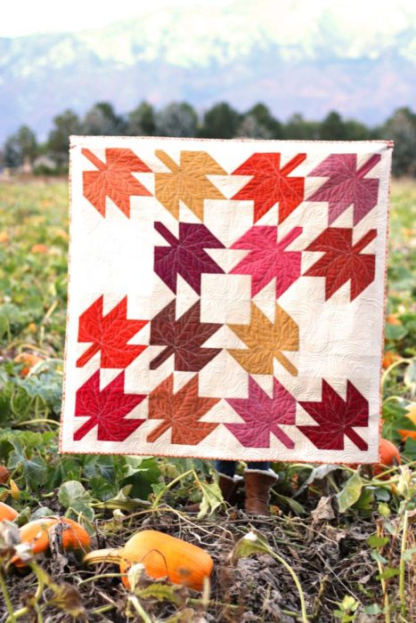 Classic Maple Leaf Quilt Block Tutorial by popular Utah quilting blog, Diary of a Quilter: image of a maple leaf block quilt in a pumpkin patch.