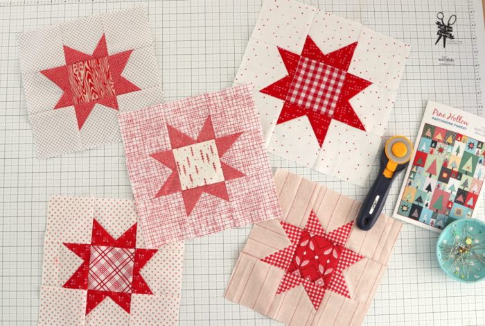 Pine Hollow Quilt Along Week 5 by popular quilting blog, Diary of a Quilter: image of various red and white quilting blocks.