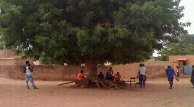 COVID-19 DIASS : Au tour du SANGOU (arbre à palabres) une habitude bien SAAFI