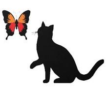Animal Verbs Image