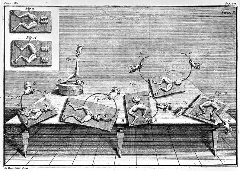 Luigi Galvani. Experiments in electrophysiology. Image