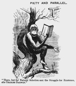 Punch, 30 November 1872, 'Piety and Parallel. Image