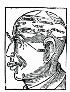 Brain Drawing first published in German in 1497.